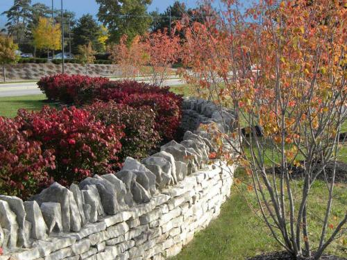 fall color in side yard with landscape by landscape architect